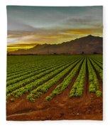 Lettuce Sunrise Fleece Blanket