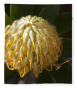 Leucospermum  -   Yellow Pincushion Protea Fleece Blanket