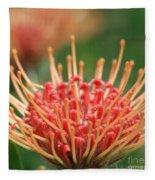Leucospermum Pincushion Protea Flower - Tropical Sunburst - Hawaii Fleece Blanket
