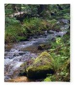 Liberty Creek 2014 #3 Fleece Blanket