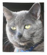 Library Cat Fleece Blanket