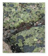 Lichen And Granite Img 6187 Fleece Blanket