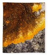 Lichen It Fleece Blanket