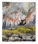 Lichen On Sea Beach Rock Fleece Blanket