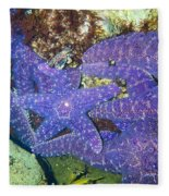 Life Among The Stars Fleece Blanket