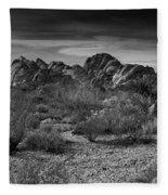 Life In The Desert Fleece Blanket