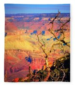 Light In The Canyon Fleece Blanket