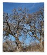 Light Posts And Trees Fleece Blanket