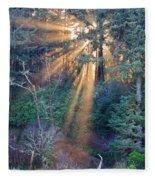 Light Shine Fleece Blanket