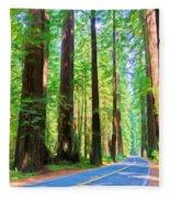 Light Through The Redwoods Fleece Blanket