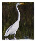 Like A Great Egret Monument Fleece Blanket