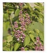 Lilac In Spring Fleece Blanket