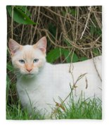 Lilac Point Siamese Cat Fleece Blanket