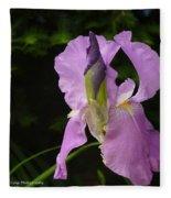 Lilac Siberian Iris Fleece Blanket