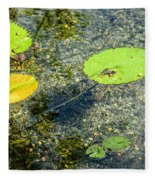 Lily Leafs On The Water Fleece Blanket