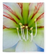 Lily -lilium Fleece Blanket