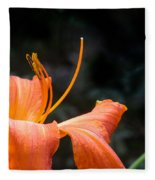 Lily Showing Pistil And Anthers Fleece Blanket