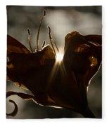 Lily's Light Fleece Blanket