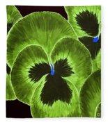 Lime Green Pansies Fleece Blanket