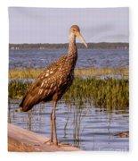 Limpkin Bird Fleece Blanket