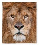 Lion Close Up Fleece Blanket