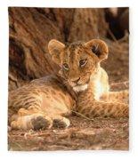 Lion Cub Panthera Leo Fleece Blanket