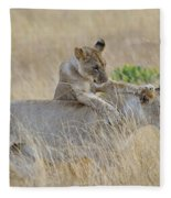 Lion Cub Playing With Female Lion Fleece Blanket