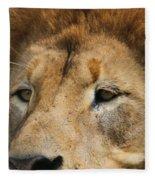 Lion Eyes Fleece Blanket