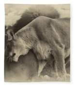 Lion Hugs In Heirloom Finish Fleece Blanket
