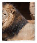 Lion Portrait Of The King Of Beasts Fleece Blanket