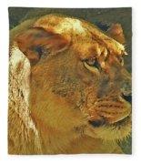 Lioness 2012 Fleece Blanket