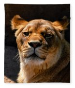 Lioness Hey Are You Looking At Me Fleece Blanket