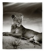 Lioness On Desert Dune Fleece Blanket