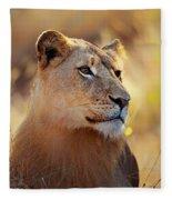 Lioness Portrait Lying In Grass Fleece Blanket