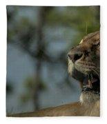Lioness Voicing Opinion Fleece Blanket