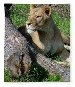 Lioness2 Fleece Blanket