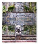 Lions In The Renaissance Court Fountain 2 Fleece Blanket
