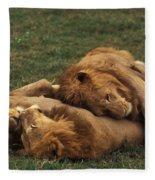 Lions Fleece Blanket