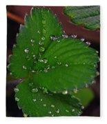 Liquid Pearls On Strawberry Leaves Fleece Blanket