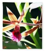Lit Up Orchid Fleece Blanket