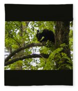 Little Bear Cub In Tree Cades Cove Fleece Blanket