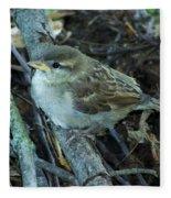 Little Bird Waiting Fleece Blanket