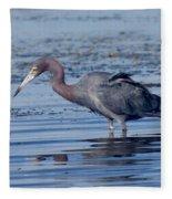 Little Blue Heron Egretta Caerulea Fleece Blanket