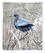 Little Blue In Rookery Louisiana Fleece Blanket