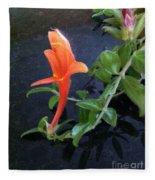 Little Dancing Dolphin Plant Fleece Blanket