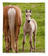 Little Foal Fleece Blanket