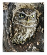 Little Owl 6 Fleece Blanket
