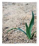 Little Plant Fleece Blanket