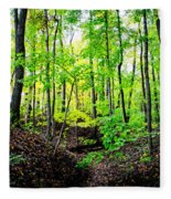 Little Valley 3 Fleece Blanket