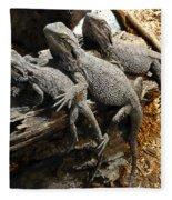 Lizards Fleece Blanket